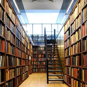 Библиотеки Айкино